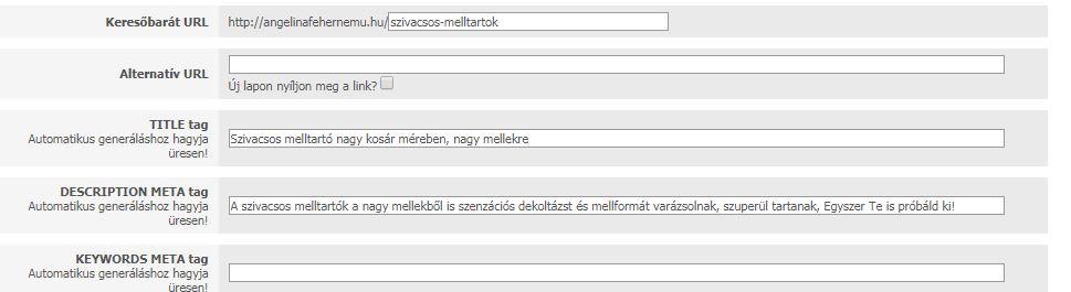 seo beállítások-UNAS webáruház keresőoptimalizálása